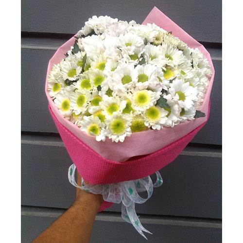 buket-bunga-aster-bandung-murah-07