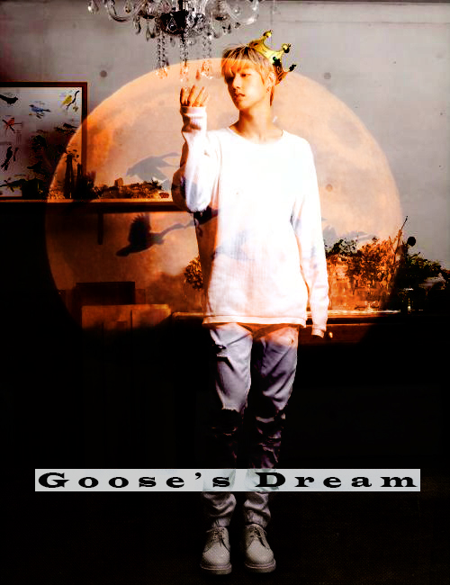 goose`s dream